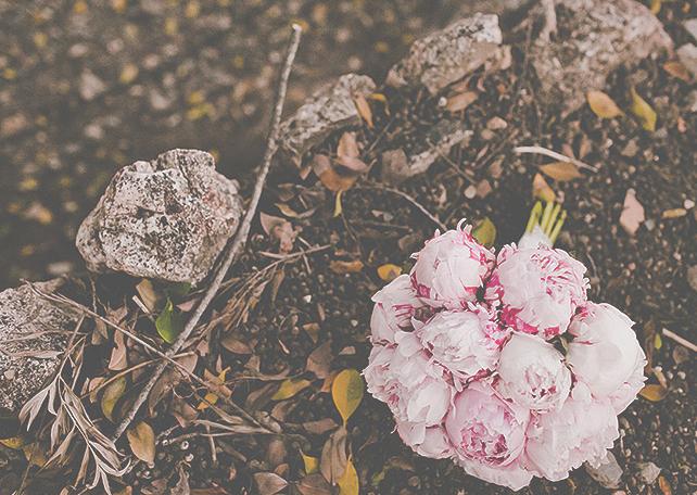 ramo de flores 1